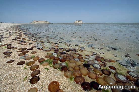 جزایر ناز در جنوب کشور ایران