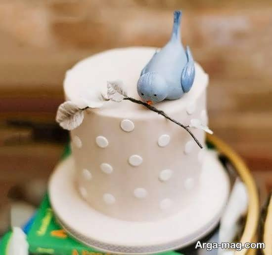 دیزاین شیک و فوق العاده کیک تولد نوجوان
