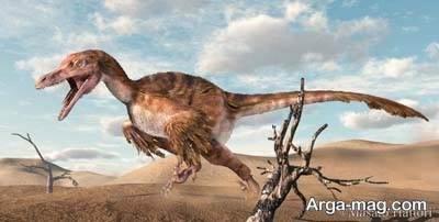 دلیل دیدن خواب دایناسور چیست؟