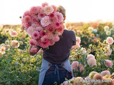 انشا زیبا در مورد گل
