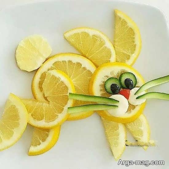 انواع متفاوت تزیین میوه برای کودکان
