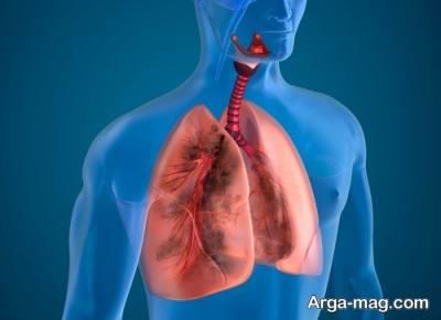 عملکرد ریه ها