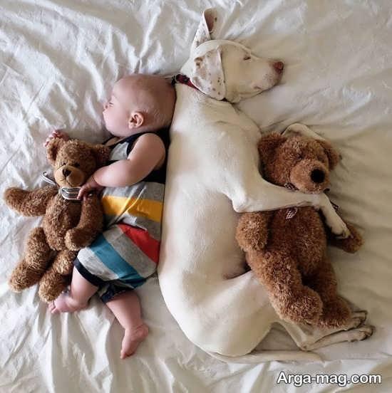 حیوان خانگی مناسب برای کودکان