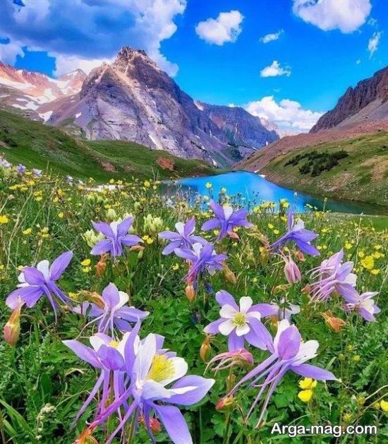 عکس طبیعت زیبا فصل بهار