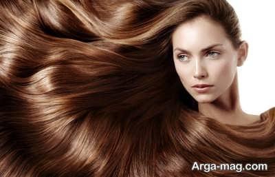 حفظ سلامت موها با گیاهان دارویی