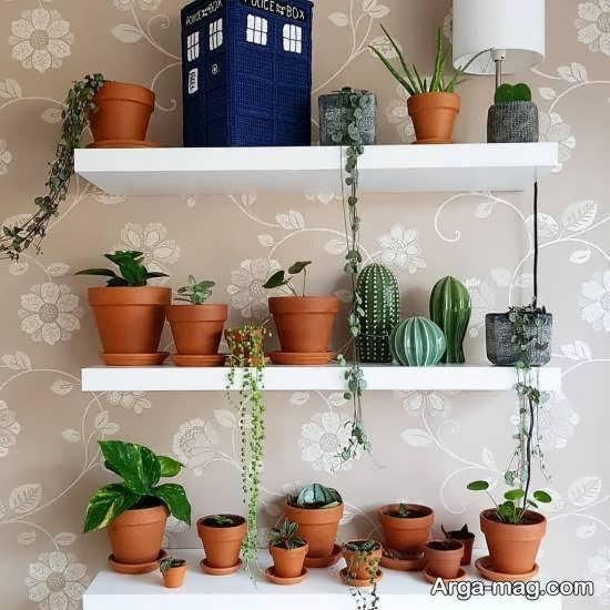الگوهایی کاربردی از قفسه دیواری برای گلدان