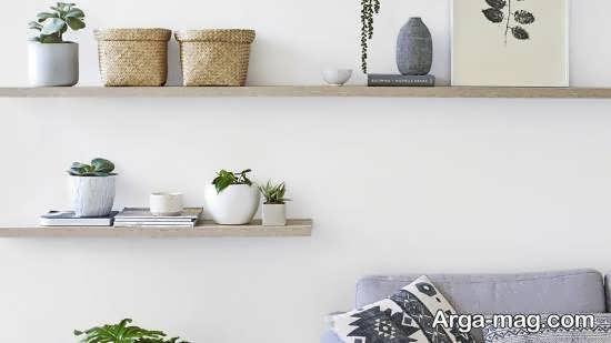 ایده هایی ایده آل از شلف دیواری برای گلدان