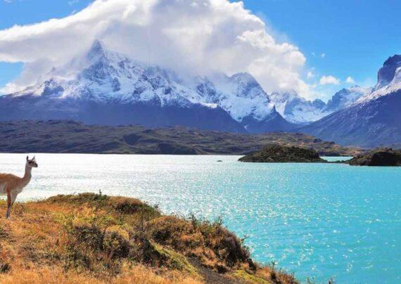 راه های مهاجرت به شیلی