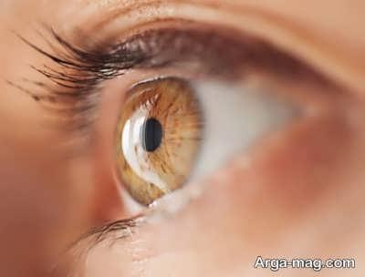 آشنایی با بخش های مختلف چشم