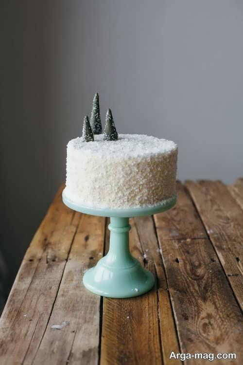 تزیین زیبا کیک با پودر نارگیل