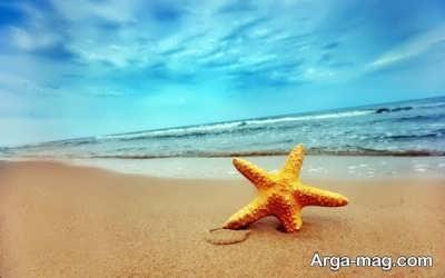 انشا پرمحتوا در مورد دریا