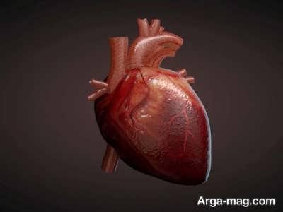 تعبیر دیدن قلب بیانگر چیست ؟