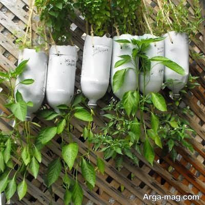 دستورالعمل کاشت گیاهان