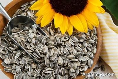 دانه آفتابگردان و ترشح سروتونین بیش تر در بدن
