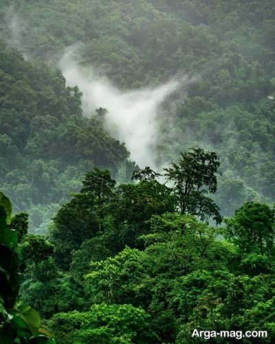 کپشن زیبا در مورد طبیعت