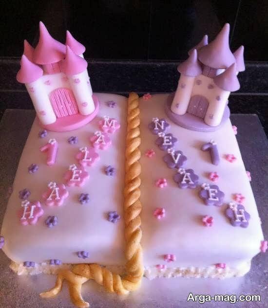 ایده هایی زیبا و تو دل برو از دیزاین کیک تولد دوقلوها