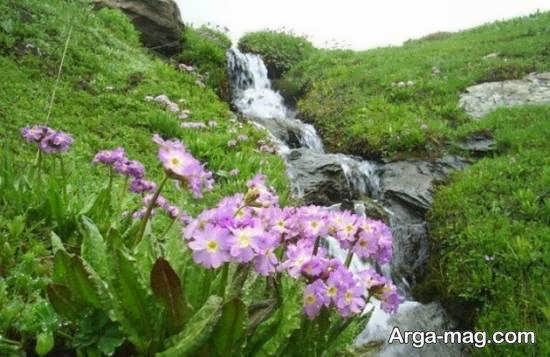معرفی آبشار سوله دوکل