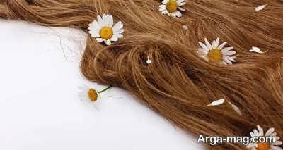رنگ مو به کمک حنا