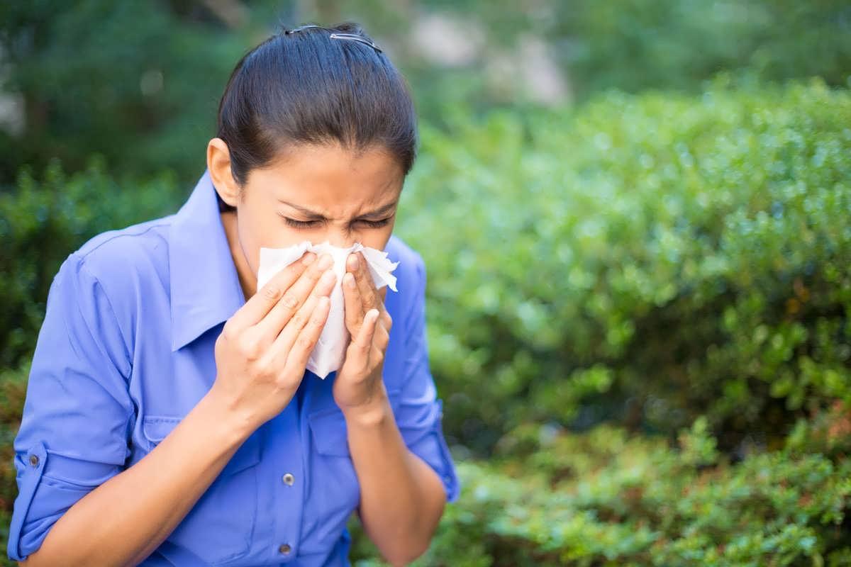 درمان گیاهی آبریزش بینی در منزل