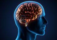 بیماری مدولوبلاستوما چیست؟