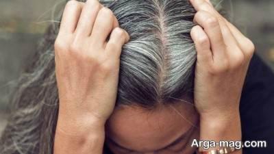 درمان سفیدی مو با رزماری و روغن آن