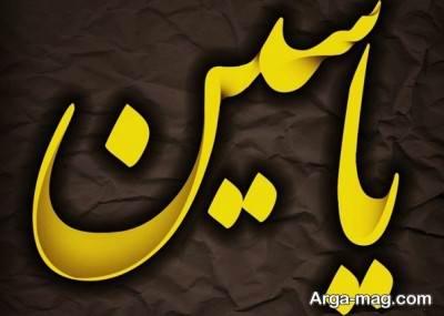معنی اسم یاسین