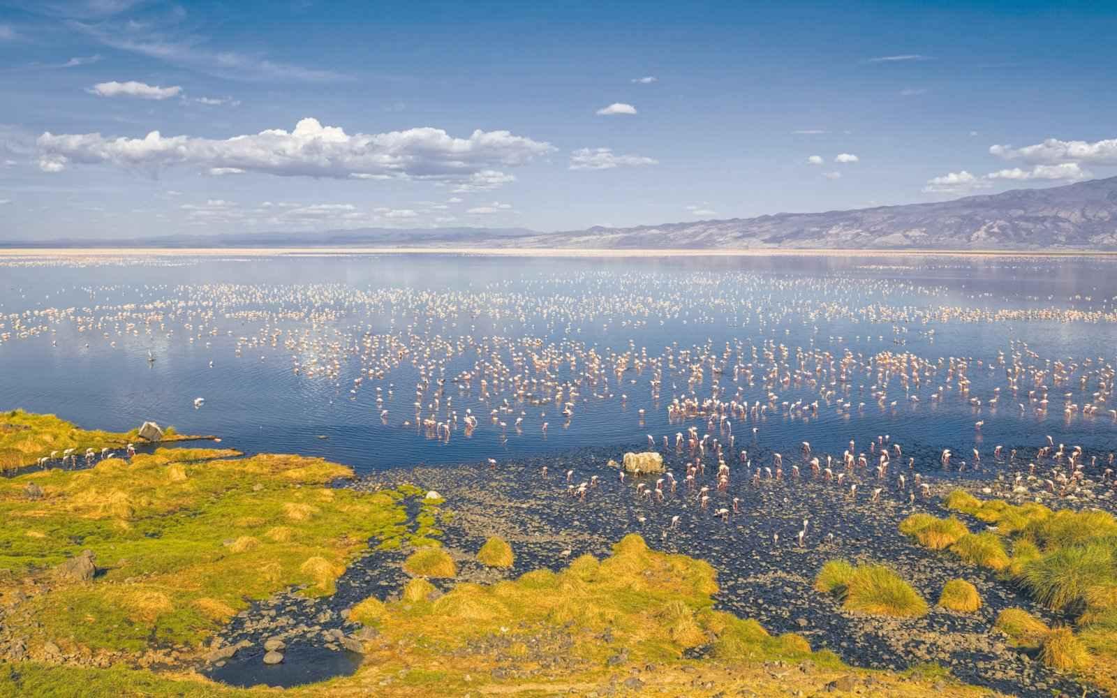 طبیعت دریاچه ناترون
