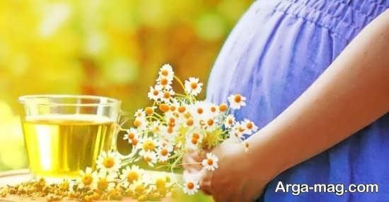 مزایای استفاده از بابونه در حاملگی