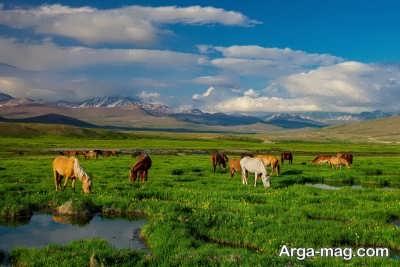 بازدید از پارک ملی در کشور پاکستان