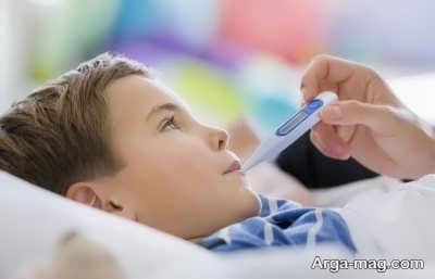 ویروس و بیماری تب دانگ