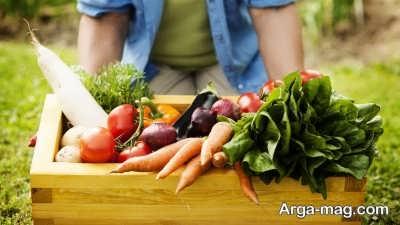 خصوصیات سبزیجات گرم مزاج