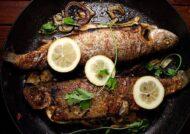 طرز تهیه ماهی شوریده و مزیت های مصرف آن
