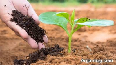 راه های ازدیاد نیتروژن گیاه