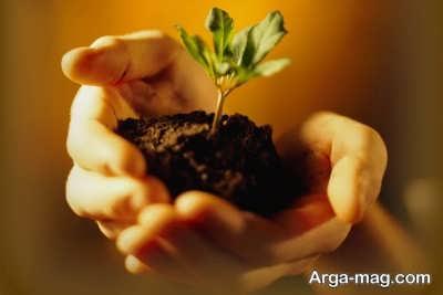 منابع طبیعی موجود در نیتروژن خاک