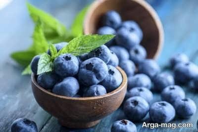 میوه های قابل استفاده و جایز در شیردهی