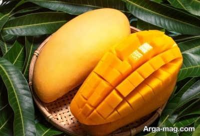 میوه های مجاز و مهم در شیردهی