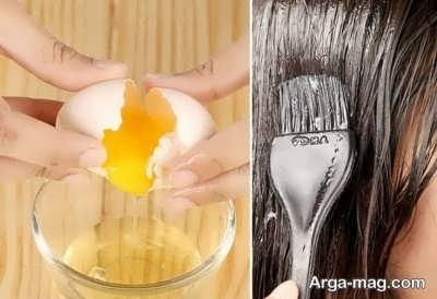خواص روغن تخم مرغ برای تقویت مو