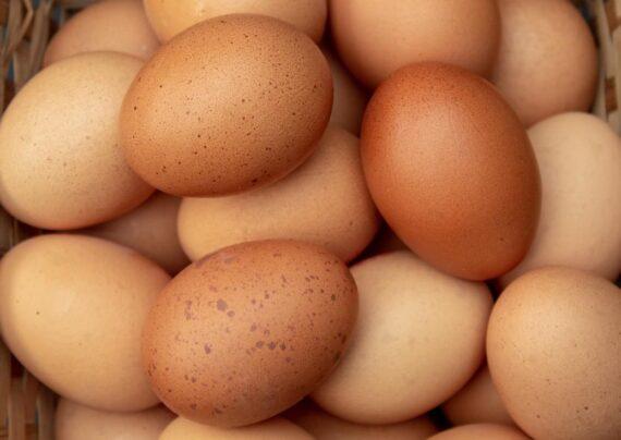 آشنایی با علل حساسیت به تخم مرغ
