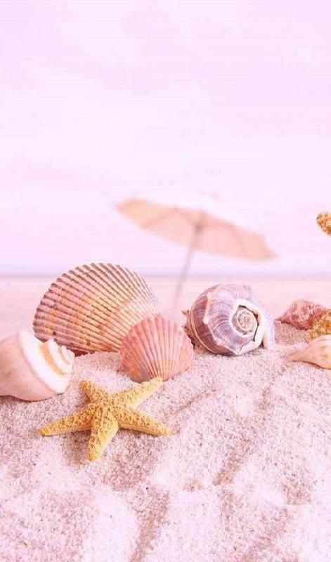 تصویر زیبا تابستانی برای پست