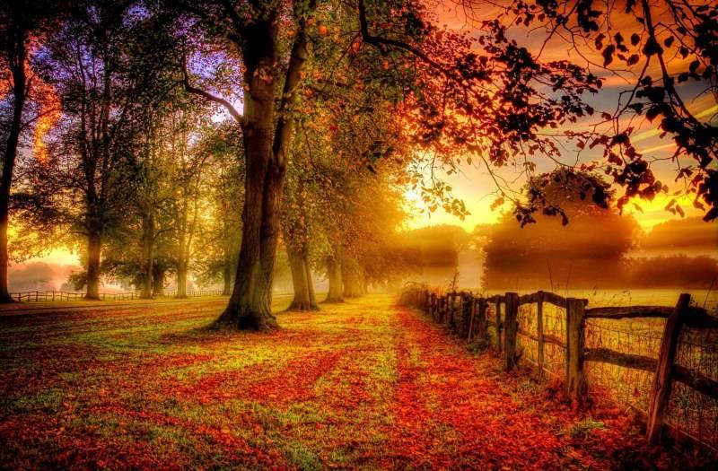 دلیل پیدایش فصل ها