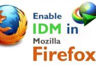 افزودن دانلود منیجر به فایرفاکس