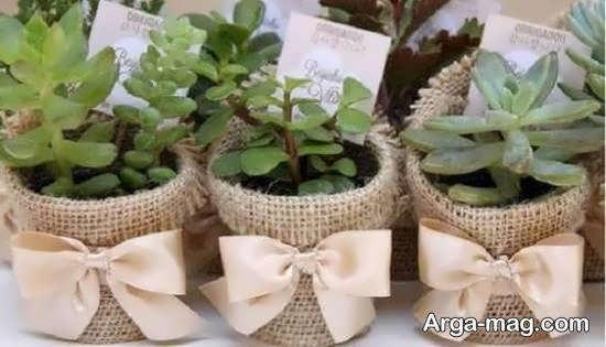 انواع نمونه های بینظیر تزیین گلدان با کنف