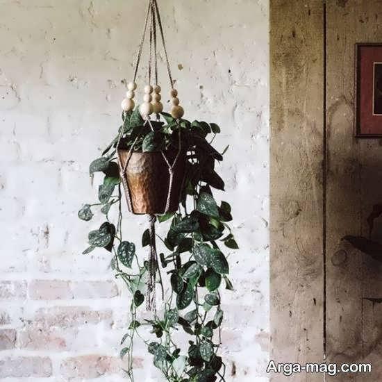 ایده های جالب دیزاین گلدان با کنف