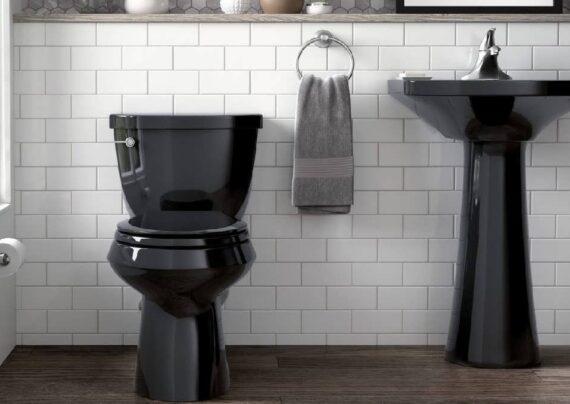 بررسی معایب توالت فرنگی