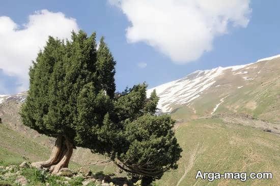 آشنایی با روستای ایگل در اطراف تهران