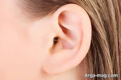 خصوصیات آناتومی گوش