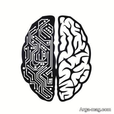 معرفی نمیکره چپ مغز