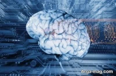 برتری جوانب مغز به چه معناست