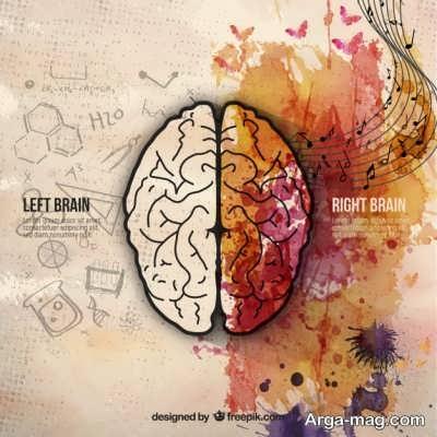 آشنایی با عملکرد نیمکره های مغز