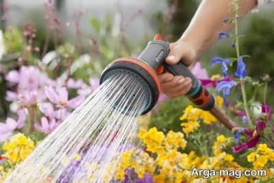 آبیاری منظم برای مراقتب از گیاهان